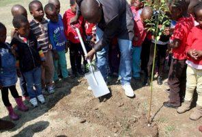 National Arbor Week commemorated