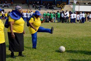 Senior citizens participate in Golden Games 2016